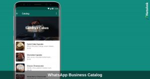 WhatsApp Business Catalog - How to showcase products and services to your customers